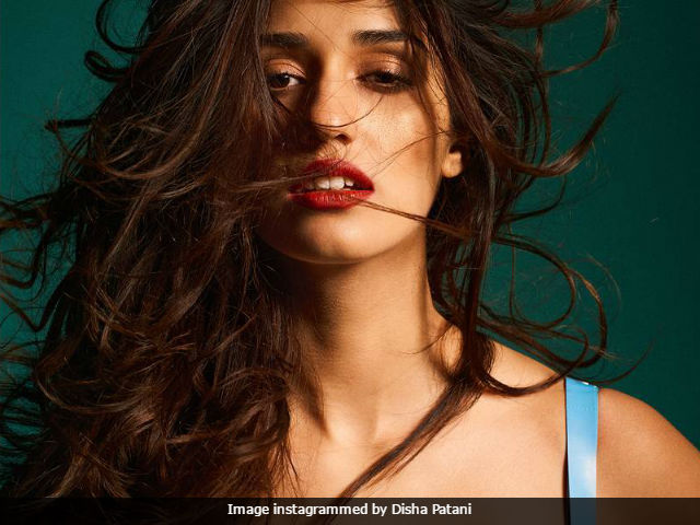 Trending: Disha Patani's Fabulous Photoshoot Is Winning The Internet In Style